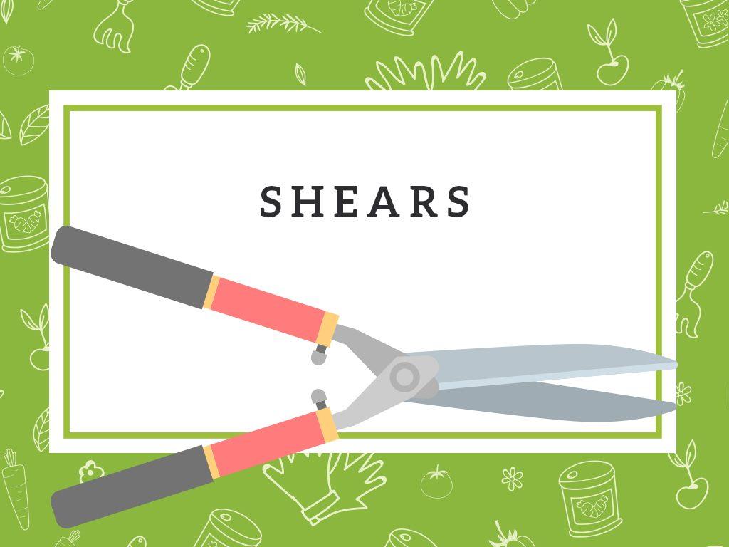 shears gardening tool