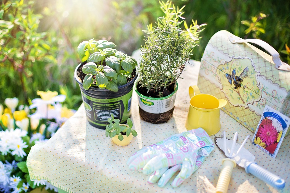 10 Recommended Gardening Tools in the Philippines for Beginners